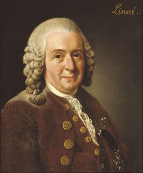 Carl_von_Linné,2